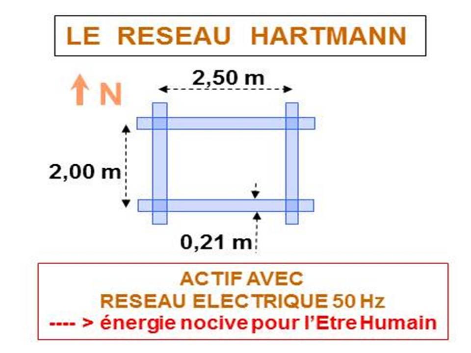 Réseau Hartmann